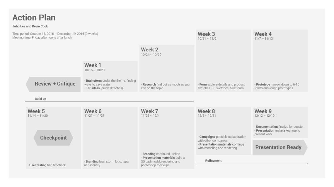 action_plan_timeline